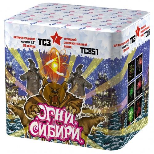 "Салют ""Огни Сибири"" (1,2""х36)"